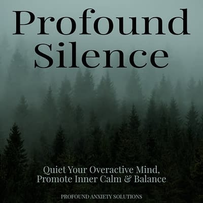 Profound Silence Brainwave Entrainment Program